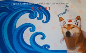 Japan Earthquake Animal Rescue and Support Crowdfunding Campaign Poster