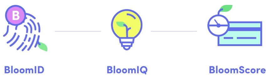Bloom ICO Features