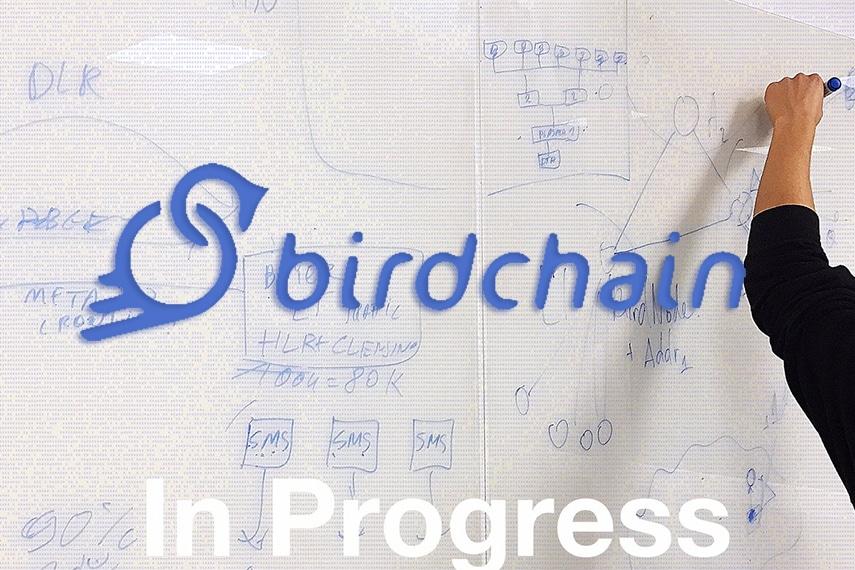 Birdchain ceo interview Audrius Vrubliauskas