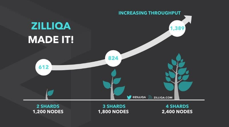 zilliqa ico increase throughput