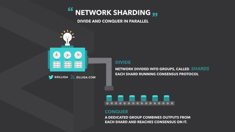 zilliqa ico network sharding