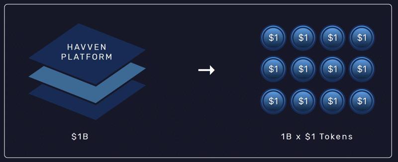 havven platform 1dollar