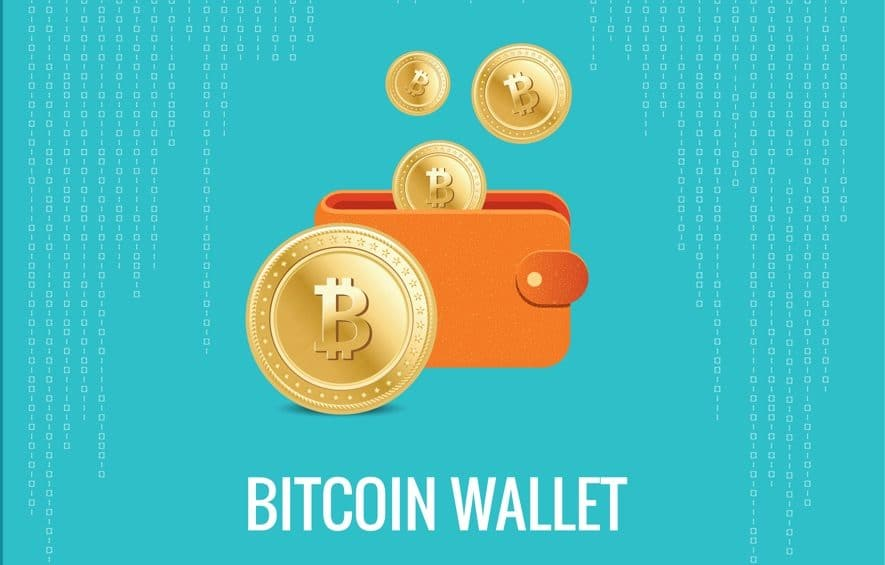 bitcoin wallet back up