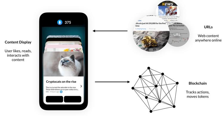 media protocol crypto catnip