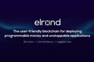 elrond proof of stake sharding blockchain
